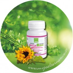 Factor base Detox 60 tbl.